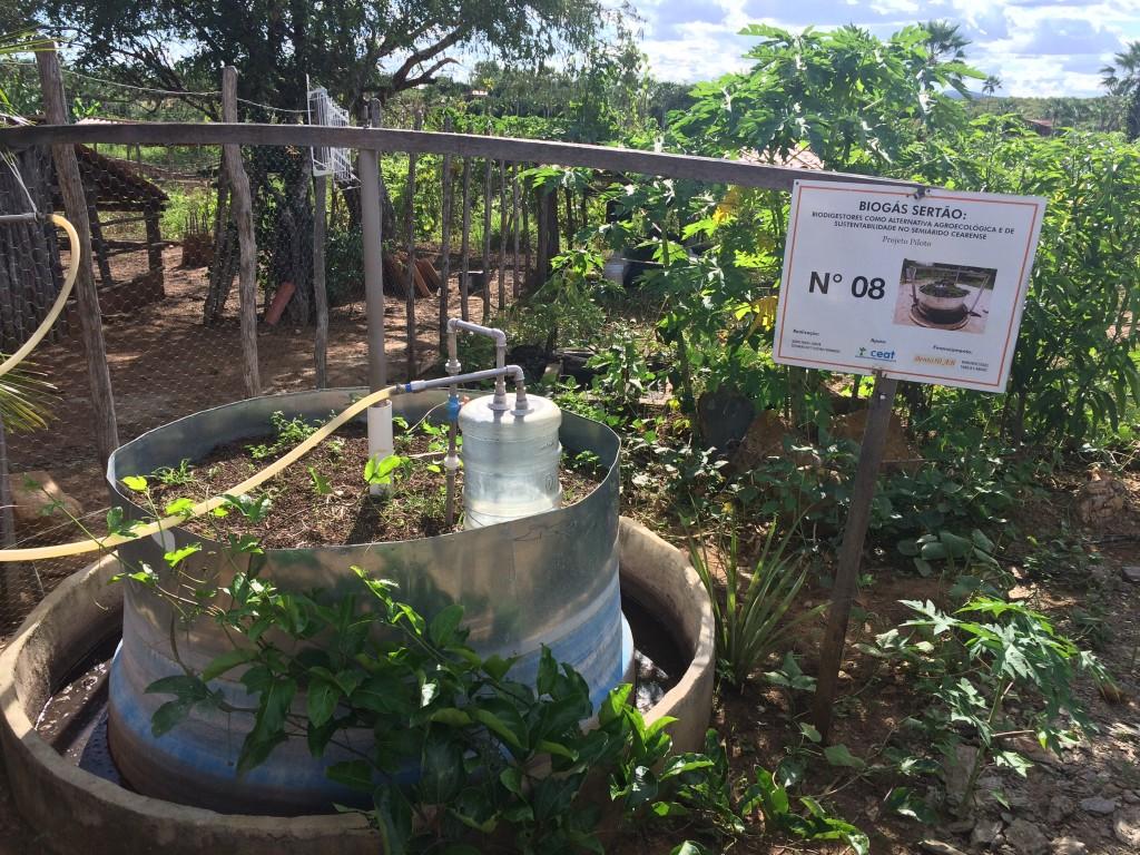 Biodigestor utiliza fezes de animais e outras matérias orgânicas para a produção de biogás
